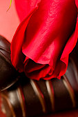 Roses and Chocolate Candy