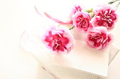 bicolor carnation and gift