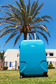 Suitcase standing on the ground next to palm tree
