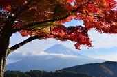Mt Fuji and Autumn Colors