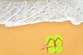 Green flip-flops and starfish at sandy beach