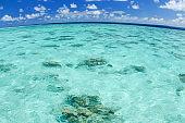 Green tropical lagoon