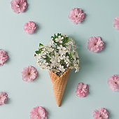 Ice cream cone with white and pink flowers and leaves. Summer minimal concept. Flat lay.