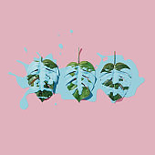 Blue paint splatter over tropical leaves on pink pastel background. flat lay. Minimal concept.