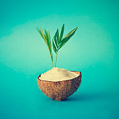 Coconut tropical island with palm leaves on blue background. Minimal summer concept. Flat lay.
