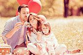 Family on picnic in park