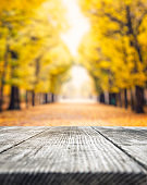 Autumn Background With Wooden Bench