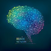 Brain abstract network