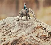 Woman riding an elephant