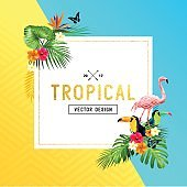 tropical Frame Design
