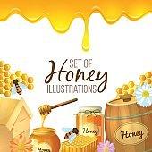 Set of honey illustration