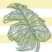 Monstera Leaf - Nautical Stripes