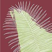 Palm Print with Splash