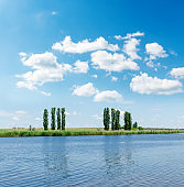 river closeup and trees on coast under clouds in blue sky