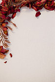 Overhead of dried autumn leaves