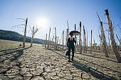 Businessman with umbrella standing on cracked earth