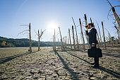 Businessman with  standing on cracked earth