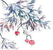 Fruit tree branch