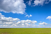 Beautiful landscape with green grass field and bright blue sky with clouds at sunset in spring. Colorful nature background. Agriculture. Green meadow