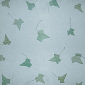 Old paper texture background with ivy leaves