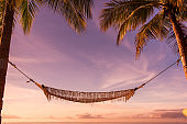 Hammock under palm trees in the morning