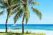 Tropical beach hammock relaxation