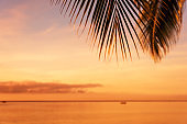 Tropical sunset blurred abstract background