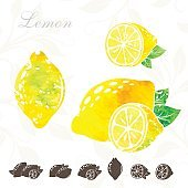 Lemons icon collection with color texture