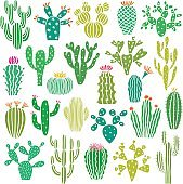 Cactus plant and flower vector set