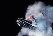 dust shoe