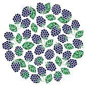 Natural fruits and berries round symbol with fresh  raspberry.