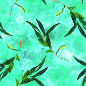 Seamless pattern with watercolor olive branch on teal