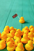 Rubber ducks sitting talking in a group whilst a single duck with a Union Jack flag breaks away from the group.