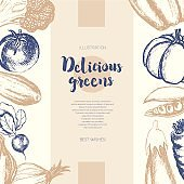Vegetables - color hand drawn composite banner.