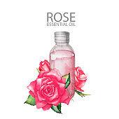 Watercolor rose oil