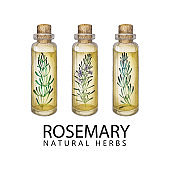 Watercolor rosemary oil