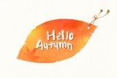 Autumn calligraphy illust