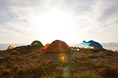 캠핑 텐트
