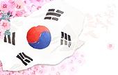 peaceful unification,The North and South, Taegeukgi (Korean flag)