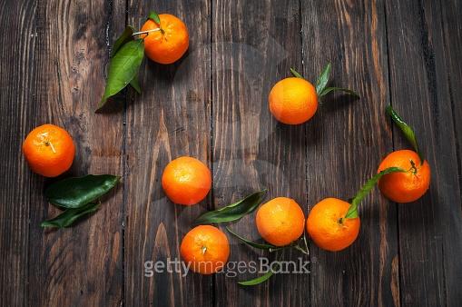 상큼 달콤 과일