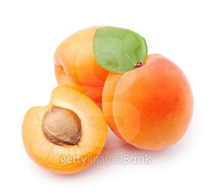 과일열매 오브제