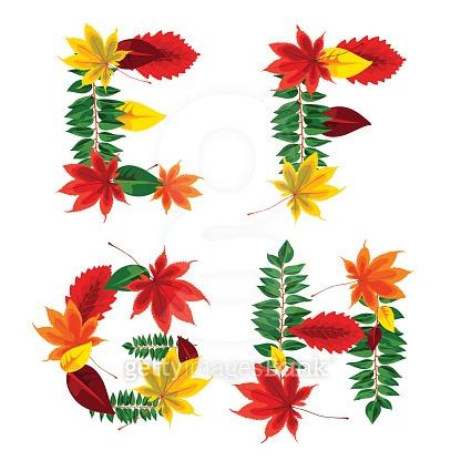 가을 낙엽