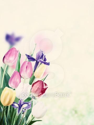 꽃과 조화