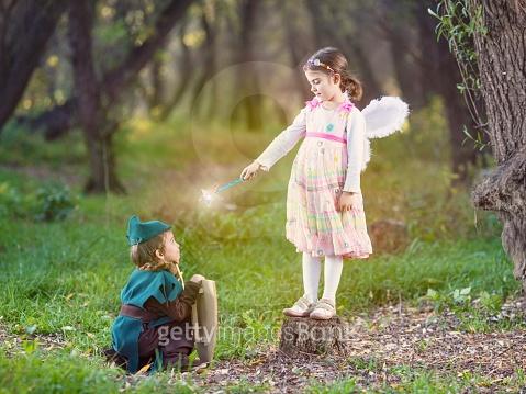 Cute Little Fairy and Knight