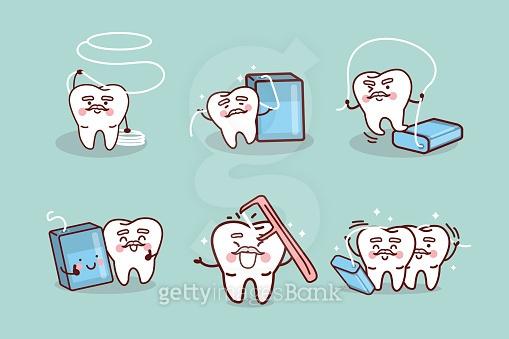 치아 일러스트