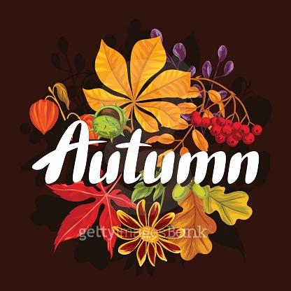 가을이라 가을바람~