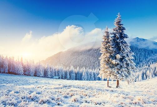 아름다운 겨울풍경