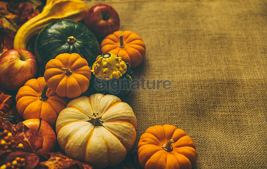 Pumpkin & Soup