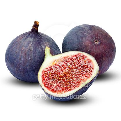 무화과,Fig