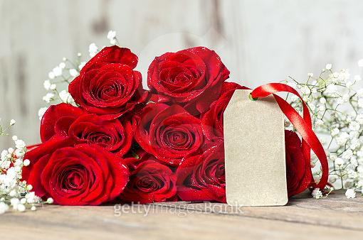 Red ROSE & GIFT